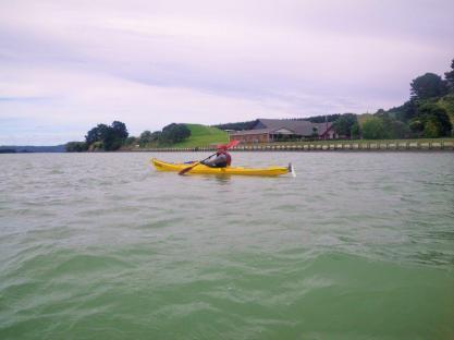 Kawhia-harbour-1