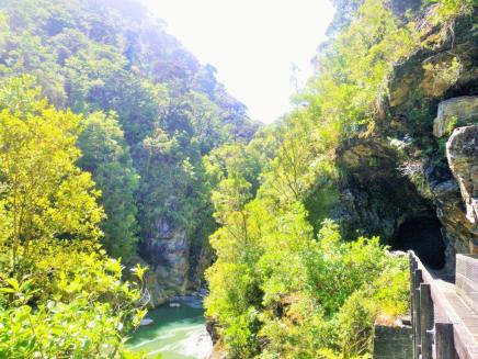 Charming Creek 9