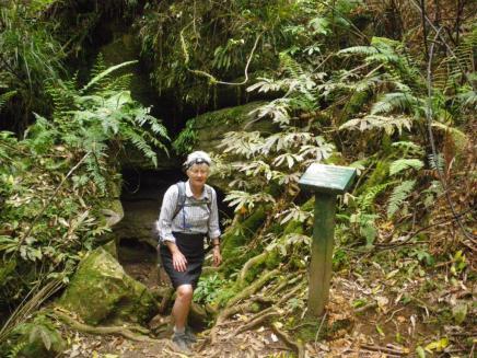 Kaniwhaniwha Cave 1