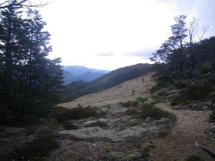 Richmond Range D2 from Starveall Hut
