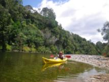 Waiwawa River 3