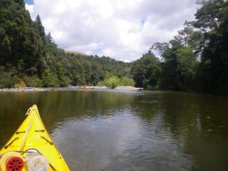 Waiwawa River 4