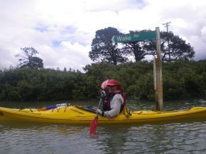 kayak 8