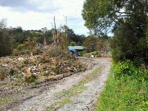 De-forestation in Albany