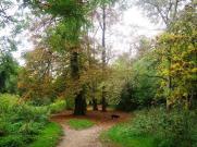 wpid-Crane-River-autumn-leaves.jpg