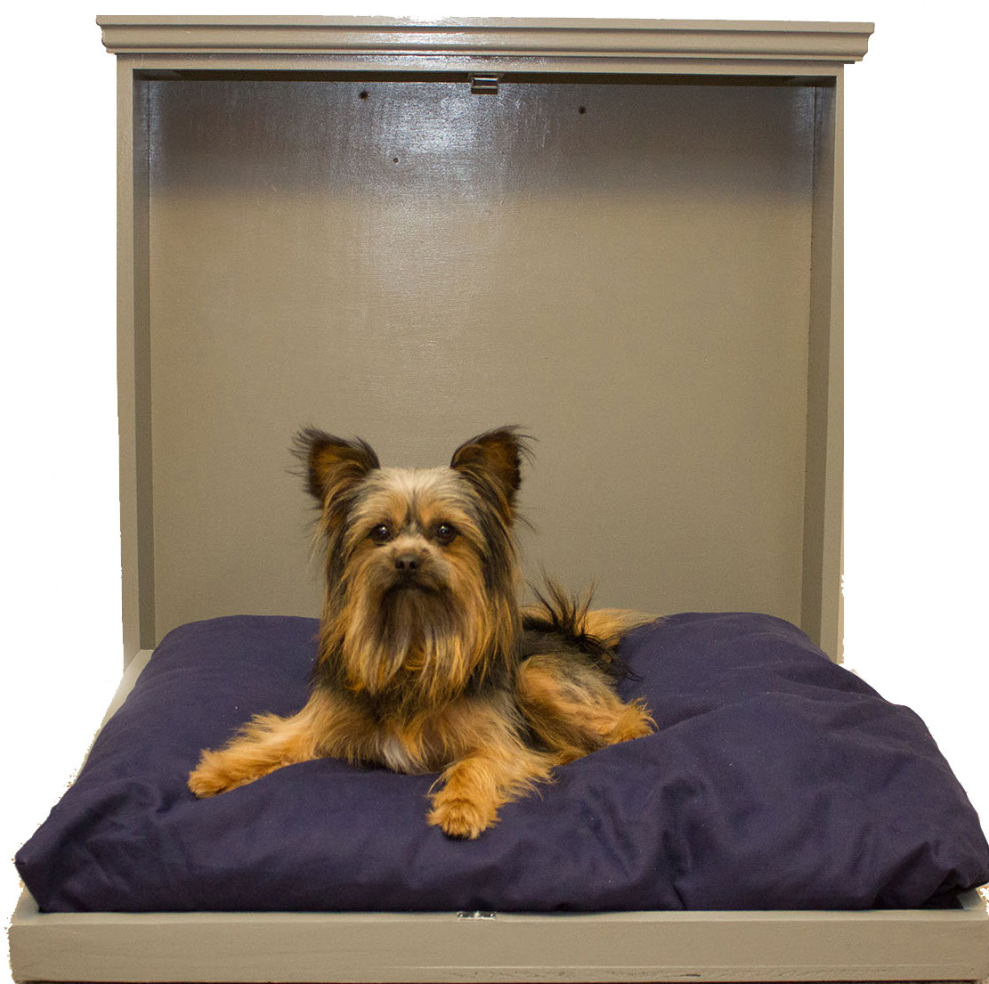 Pet Murphy Beds for Dogs