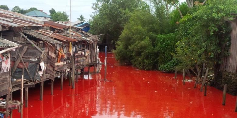 Terkuak Misteri Air Sungai yang Mendadak Merah di Bontang