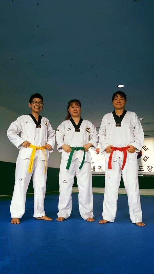 Jurus Karate Sabuk Hitam : jurus, karate, sabuk, hitam, K-Tigers,, Kombinasi, Antara, Taekwondo, K-Pop, Halaman, Kompasiana.com