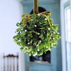 Summer Kitchen Ideas Zephyr Hurricane Ak2500 Hood Mistletoe Kissing Ball | Martha Stewart