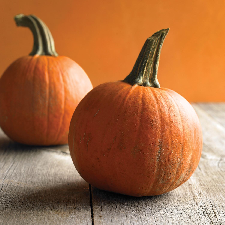 Pinterest Halloween Home Decor Ideas