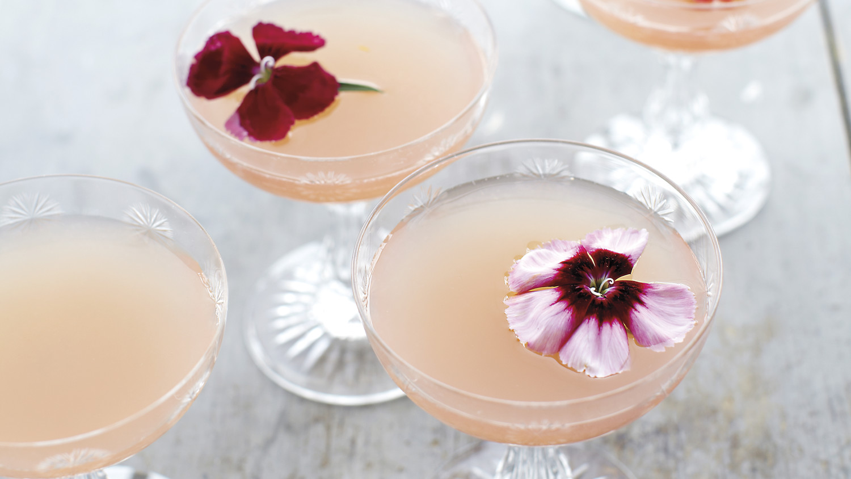 Lillet Rose Spring Cocktail Recipe  Martha Stewart