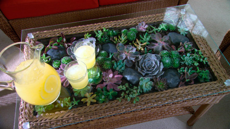 Video Learn & Make Terrarium Coffee Table