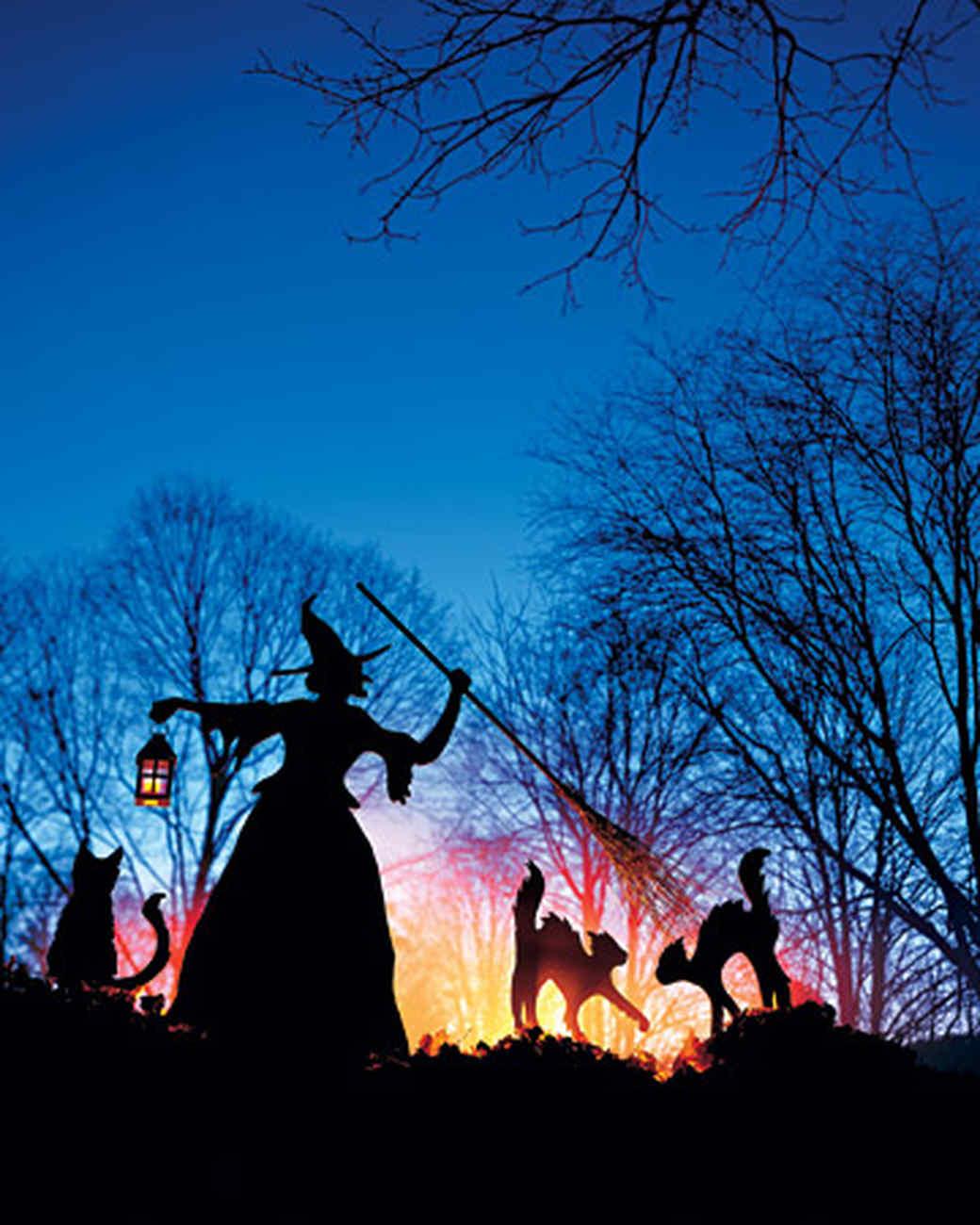 Make Home Halloween Costumes Ideas