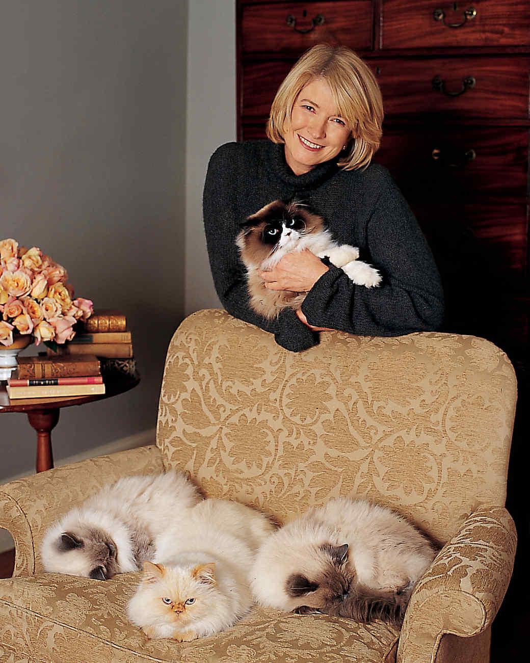 Marthas Cats  Martha Stewart