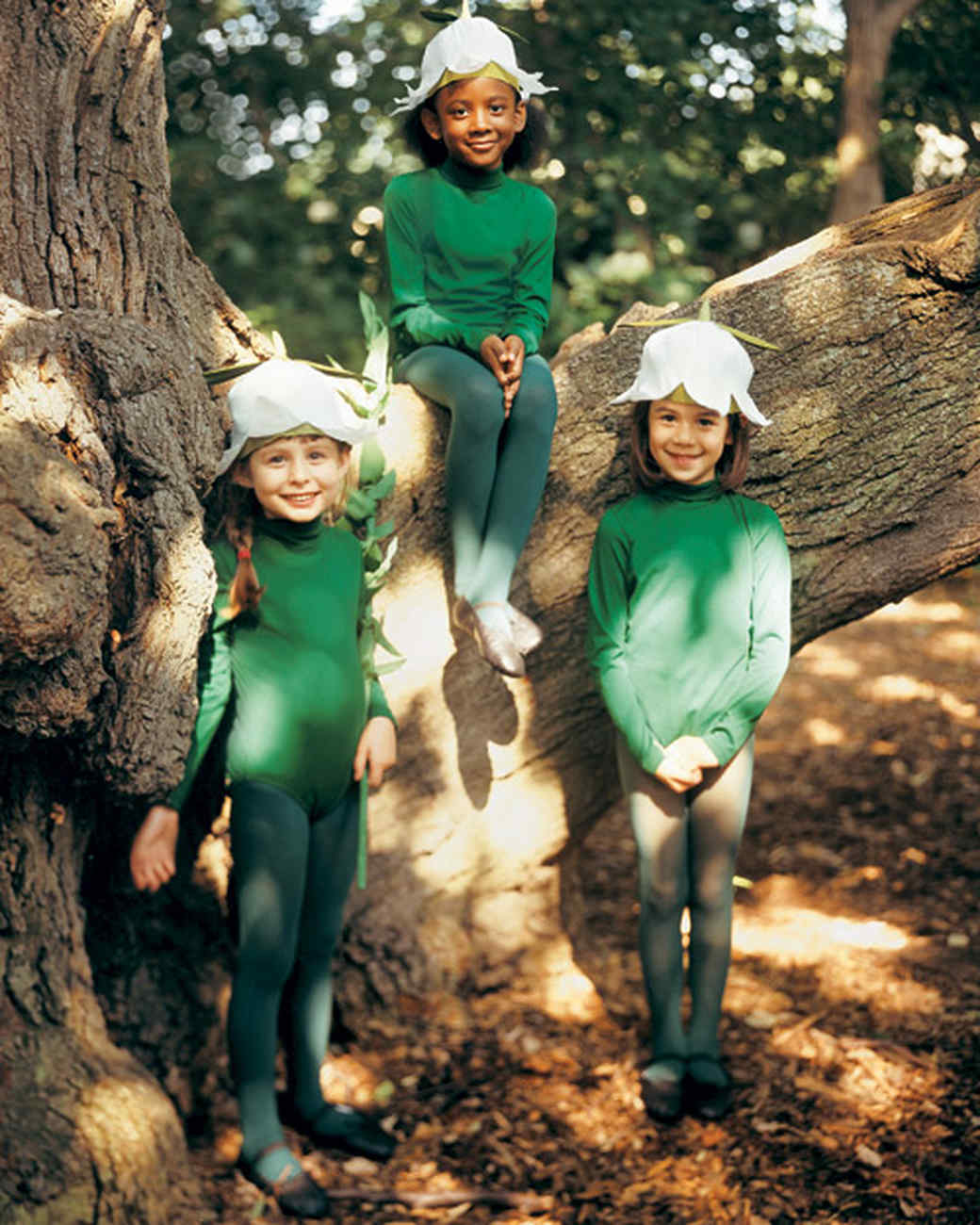 Lily Of Valley Costume Martha Stewart