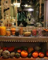 Halloween Decorations from the Show | Martha Stewart
