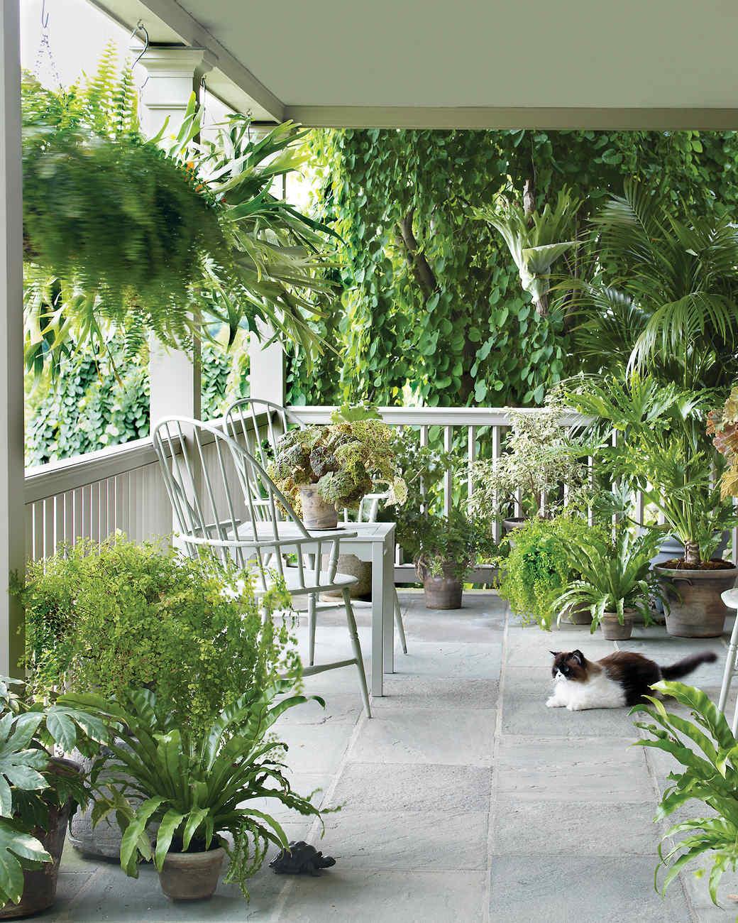 Martha Stewart S Home Decorating Lessons Martha Stewart