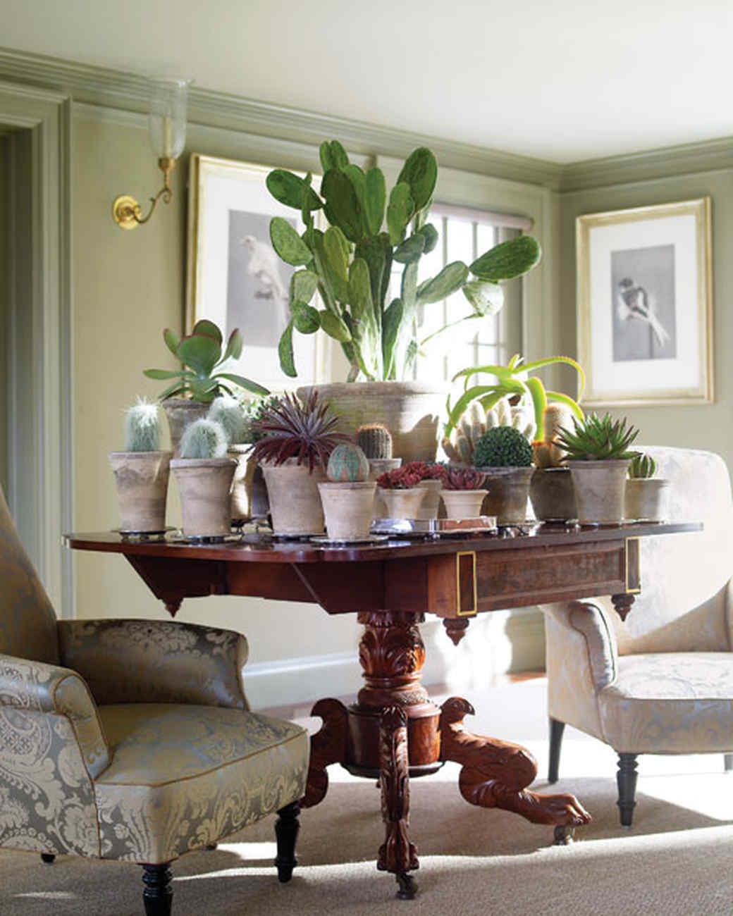 Martha' Home Decorating With Houseplants Martha Stewart