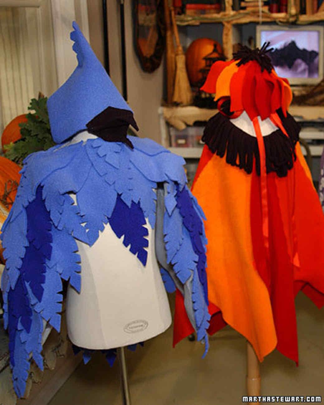 Fleece Costume Martha Stewart