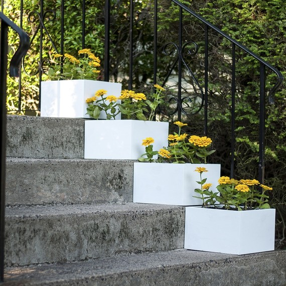 Build Your Own Planter Box