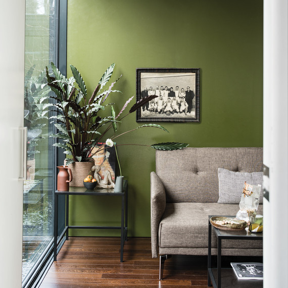 living room paint colors 2019 modern ideas with red leather sofa these are the most popular for green painted plant near window