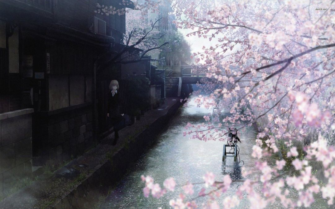 8360 Anime Cherry Blossom Android Iphone Desktop Hd Backgrounds Wallpapers 1080p 4k Hd Wallpapers Desktop Background Android Iphone 1080p 4k 1080x675 2021