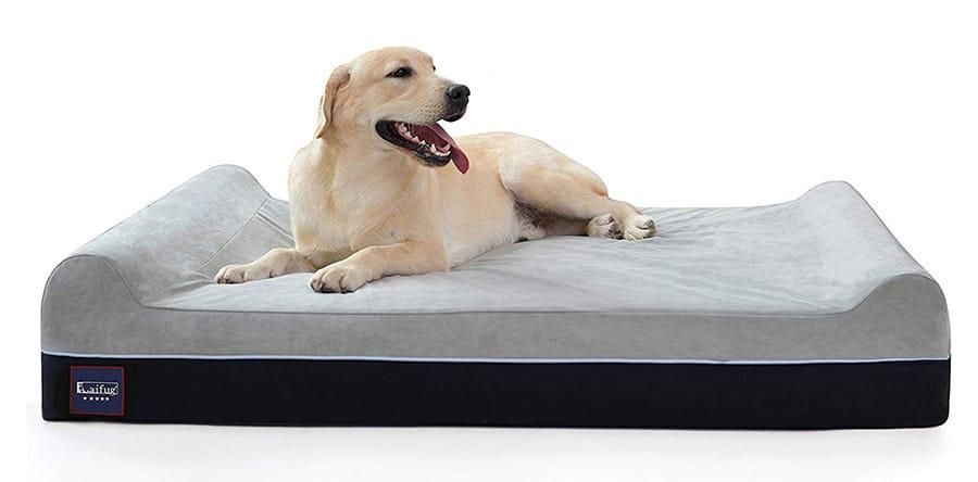 best waterproof dog bed 10 top picks
