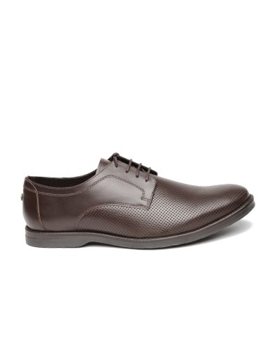 Carlton London Men Coffee Brown Perforated Leather Semiformal Derby Shoes