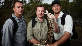 Python Hunters National Geographic Wild
