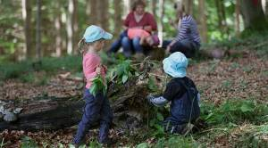 Camp Kawartha launches European-style forest school (01:49)