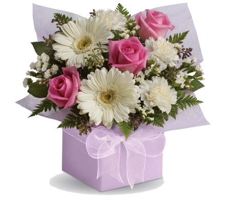 We provide the best quality of flowers from holland, and have a large variety of arrangements suitable for home use. Flower Delivery Duncraig Same Day Florist Delivery A Mano Florals Gifts