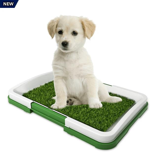 pet pal puppy artificial grass potty trainer mat 18 5 l x 13 5 w