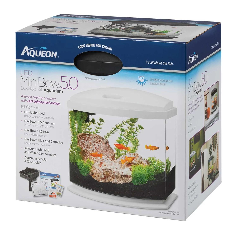 aqueon minibow blue led desktop fish