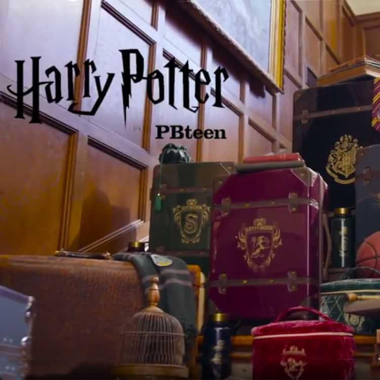harry potter platform 9 3 4 pillow cover