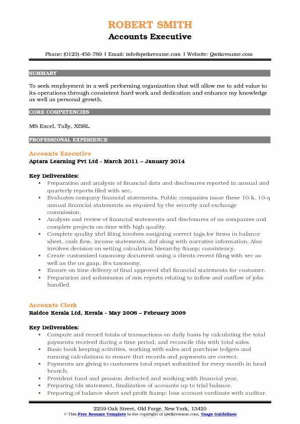 Accounts Executive Resume Samples   QwikResume