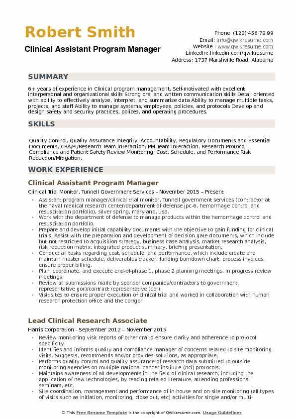 program manager resume executive summary