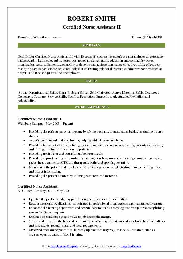 resume work and travel example