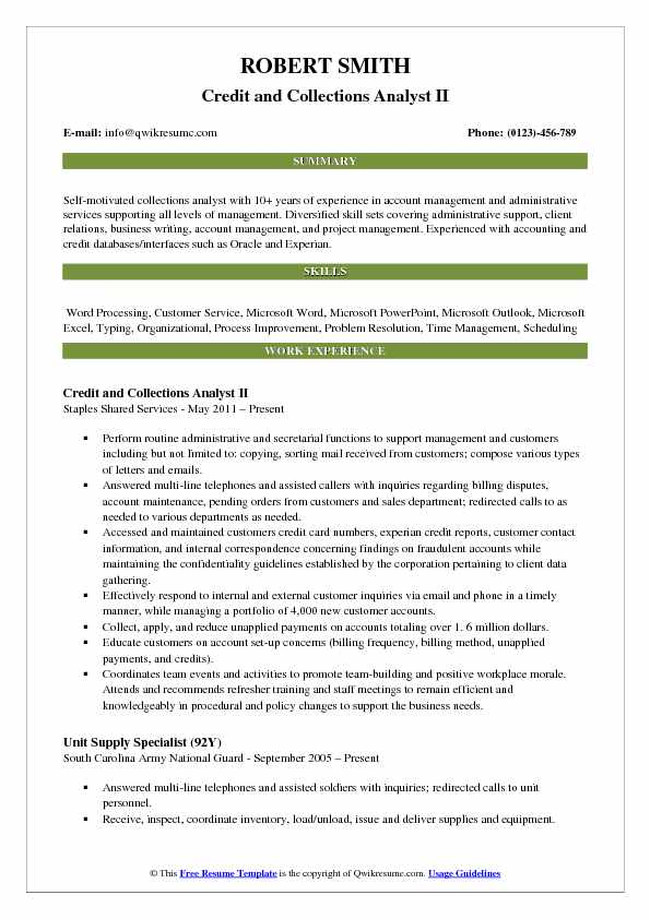 credit card resume example