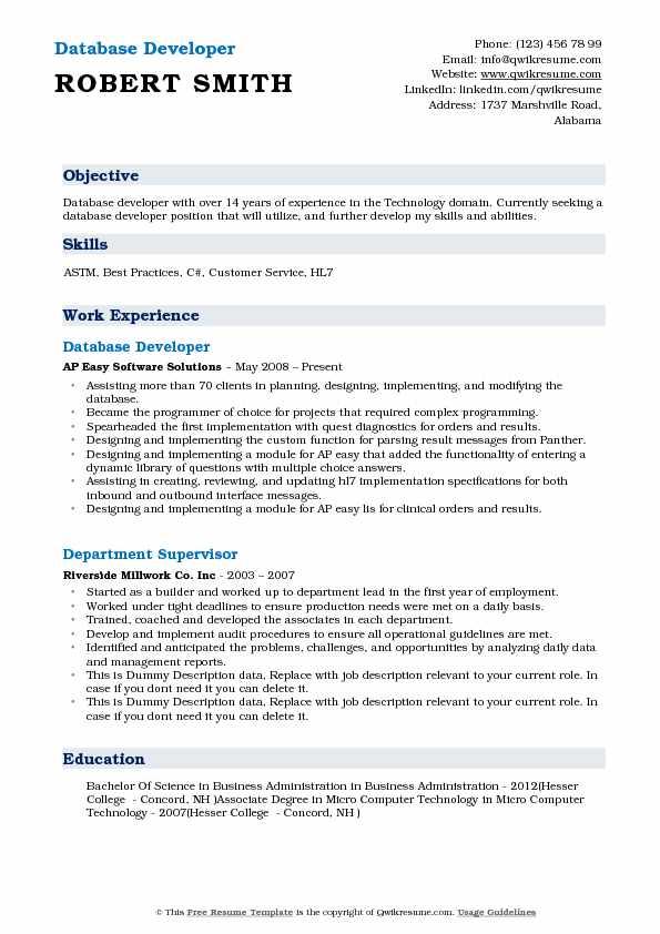 resume summary for database developer