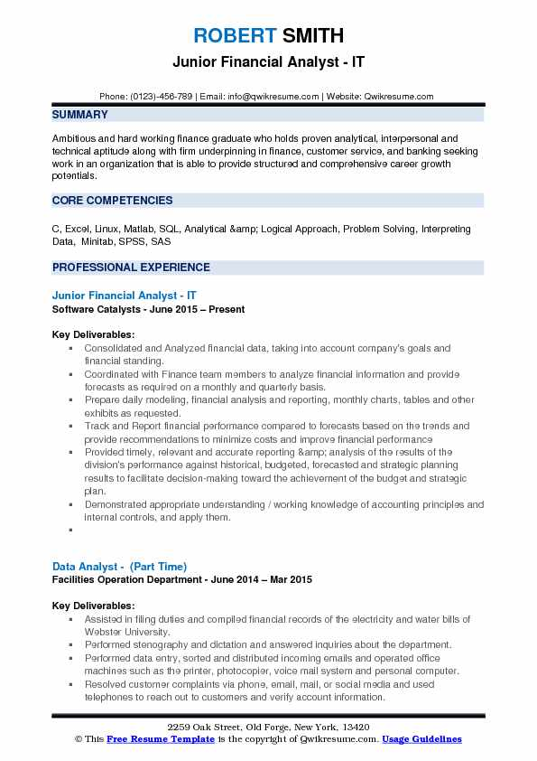 resume profile examples financial analyst