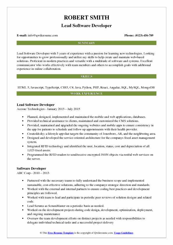71+ Resume Headline For Software Developer - What To Put On