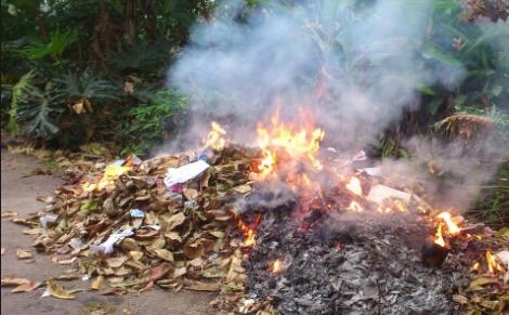 Jangan membakar sampah di pekarangan ada aturannya