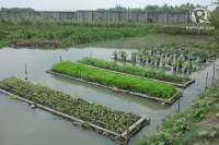 10 features of a Philippine farm of the future