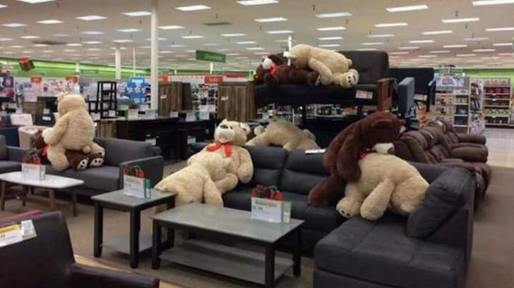 PHOTO NSFW Naughty Teddy Bears Caught in Sex Positions in Store  Comic Sands