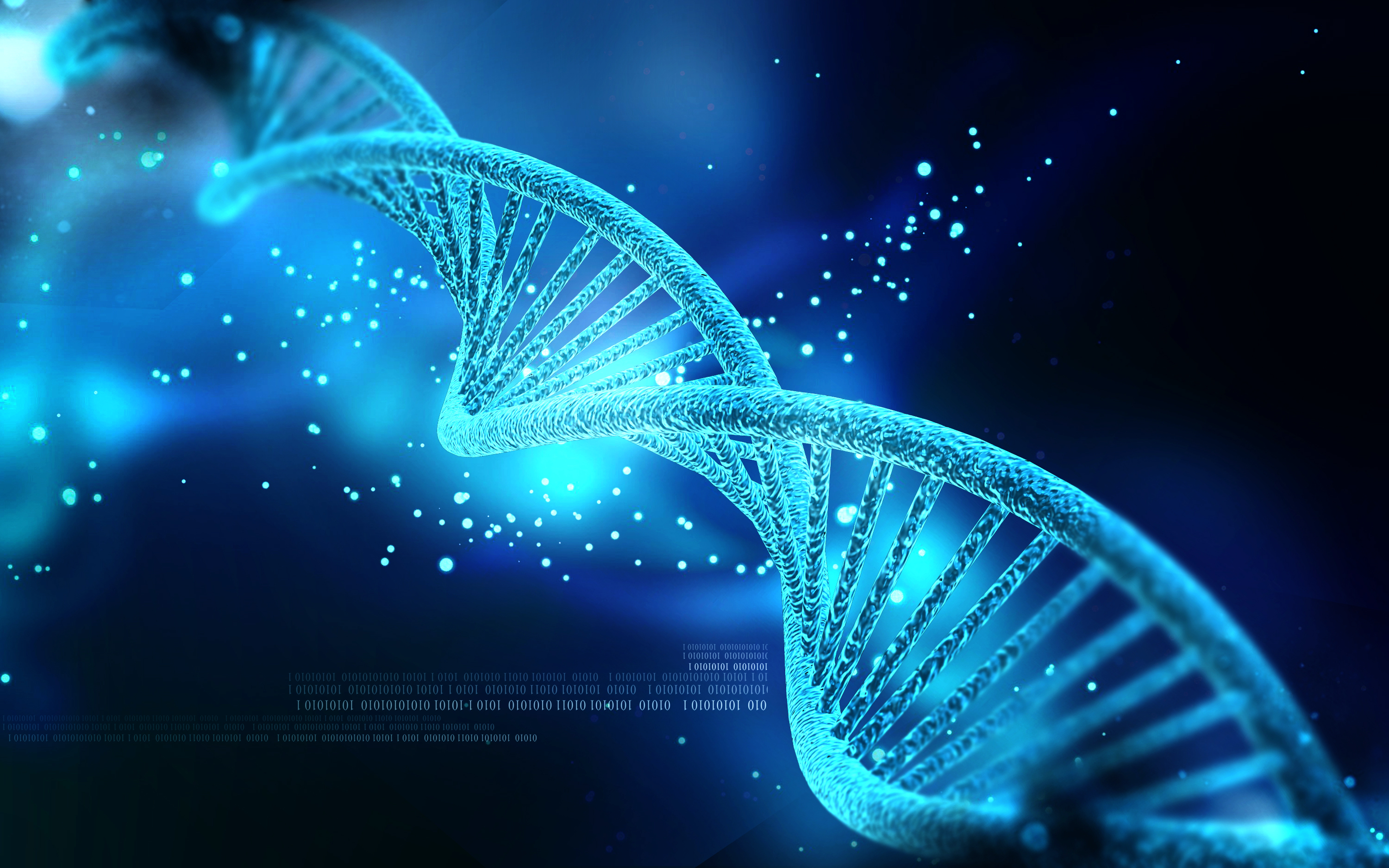 human dna will be