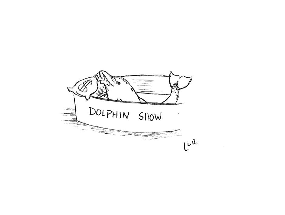 Dear SeaWorld, We Drew You 5 Cartoons To Explain Why Your