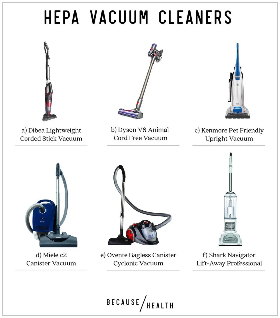 hight resolution of a dibea lightweight corded stick vacuum b dyson v8 animal cord free vacuum c kenmore pet friendly upright vacuum d miele c2 canister vacuum e ovente