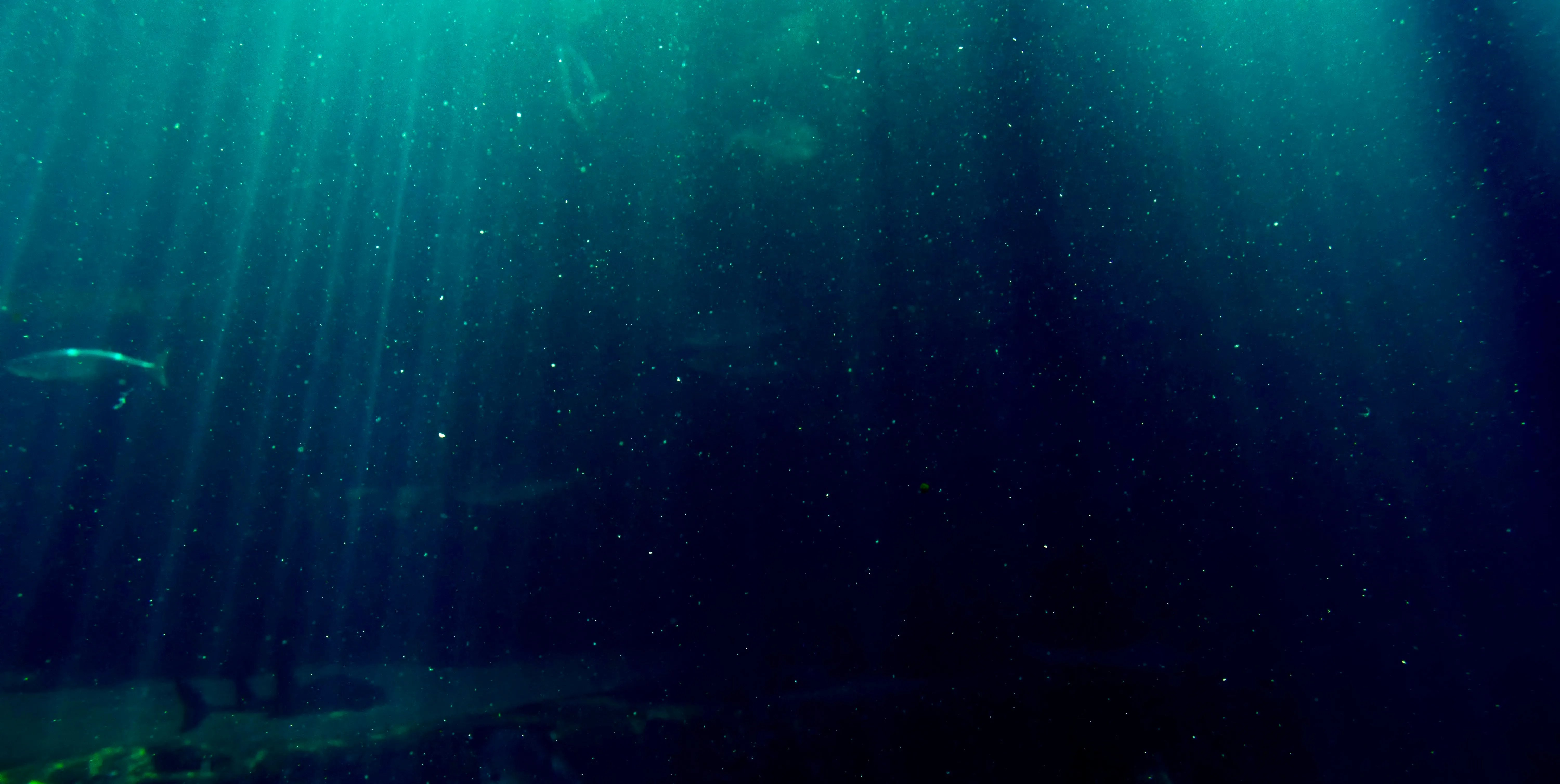Everest at depth of challenger deep, you would have to swim at least a mile to get to. More Microplastics In Deep Sea Than Great Pacific Garbage Patch Ecowatch