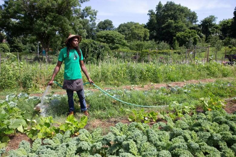 Black Philadelphia farming