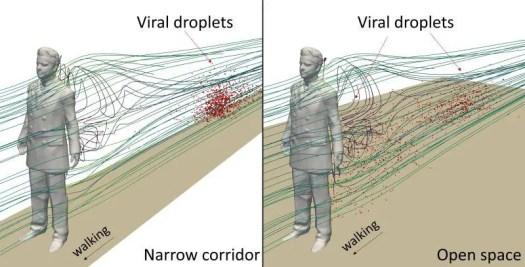 Narrow Hallways Increase Coronavirus Spread 2